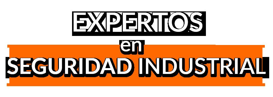 EXPERTOS-EN-SEGURIDAD-INDUSTRIAL DAM CONSULTORES